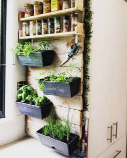 Homemade Herb wall