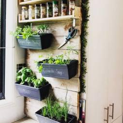 Homemade Herb wall